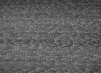 Roman Opalka, detalle 1-35327 ()