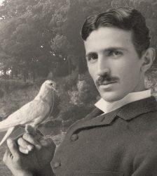 Representación ficticia de Nikola Tesla con su amada paloma.
